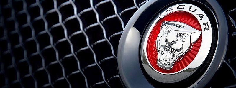 jaguar-bekannte Probleme
